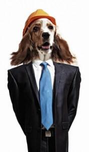 Beratung Hundesalon